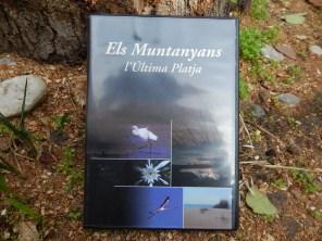Els Muntanyans, l'Última Platja